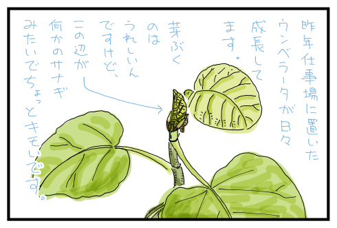 20150605.png
